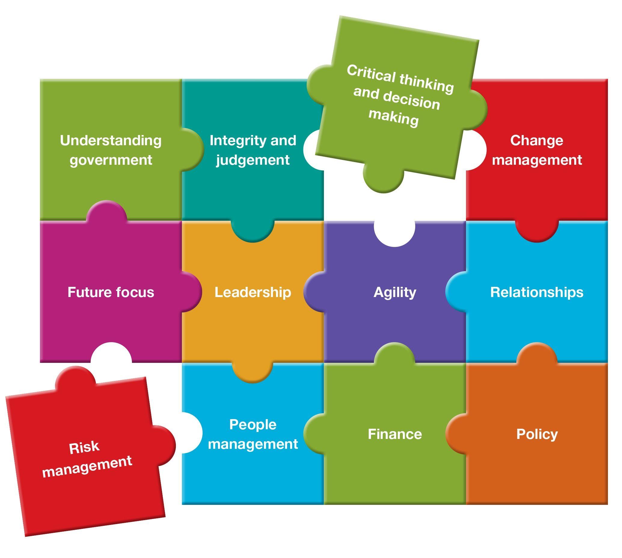 public sector executive development framework google
