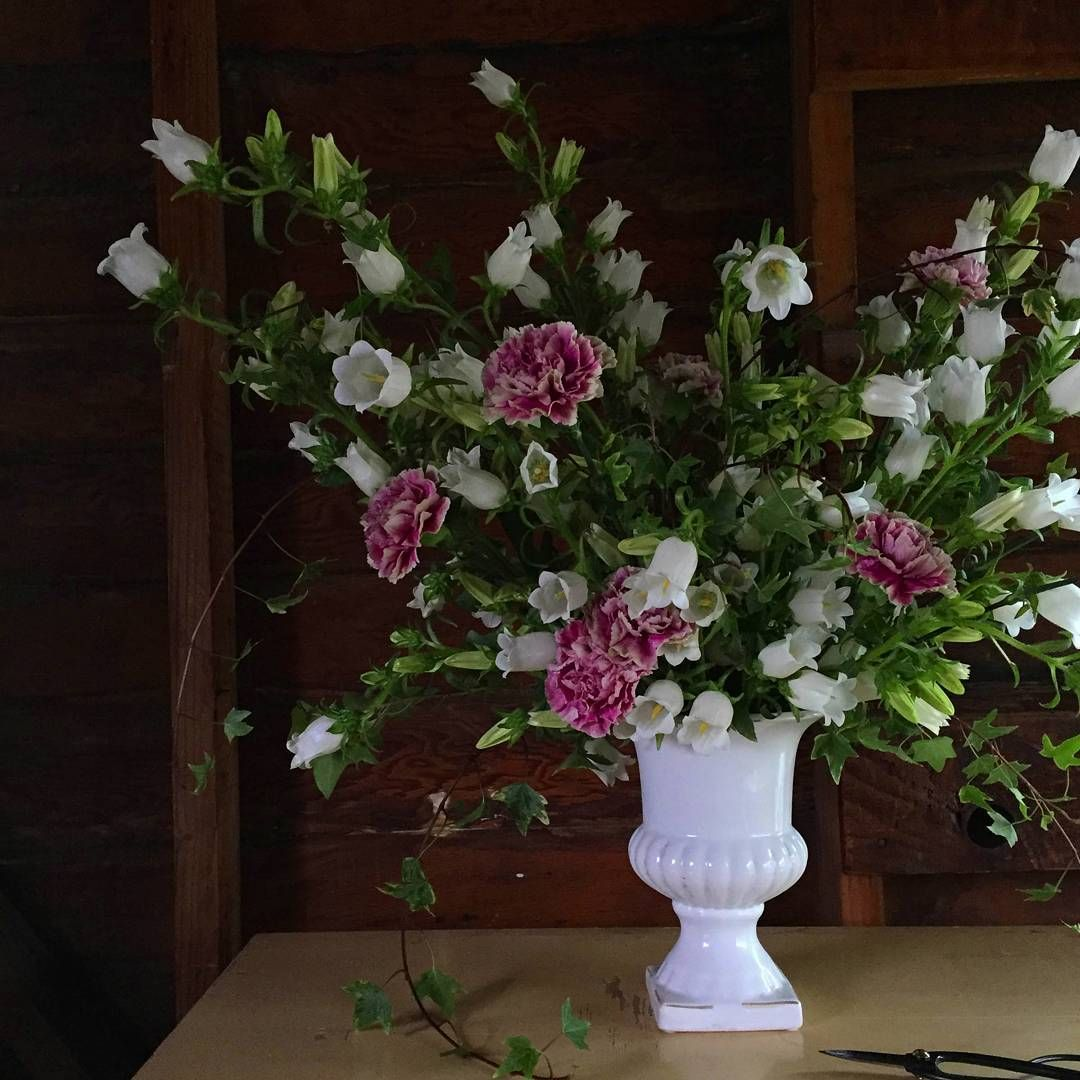 Carnation and campanula arrangement by fir and flora with