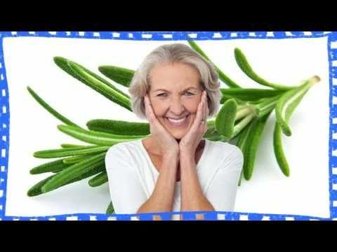 Romero planta medicinal para adelgazar