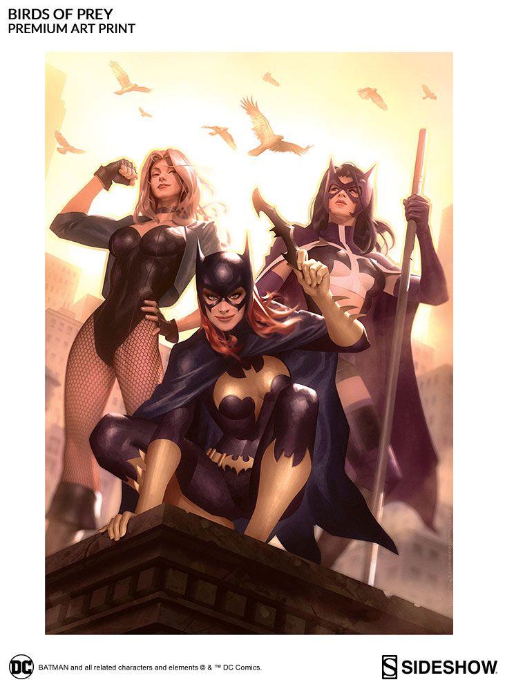 Dc Comics Birds Of Prey Premium Art Print By Sideshow Collec Sideshow Collectibles Superhero Comics Girls Dc Comics Characters