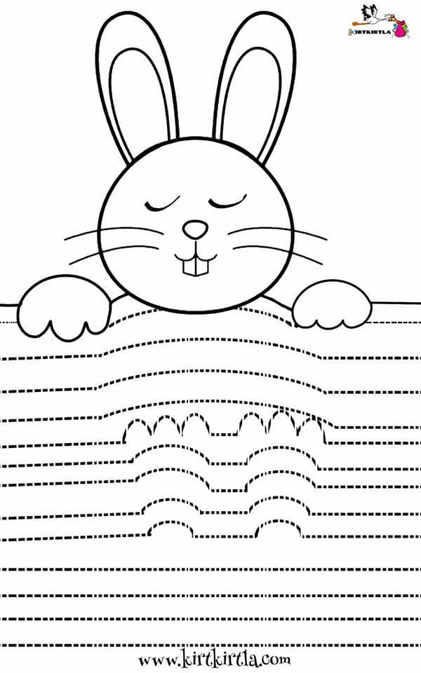 Uykucu Tavsan Cizgi Calismasi Boyama Kitaplari 3d Boyama Okul Oncesi