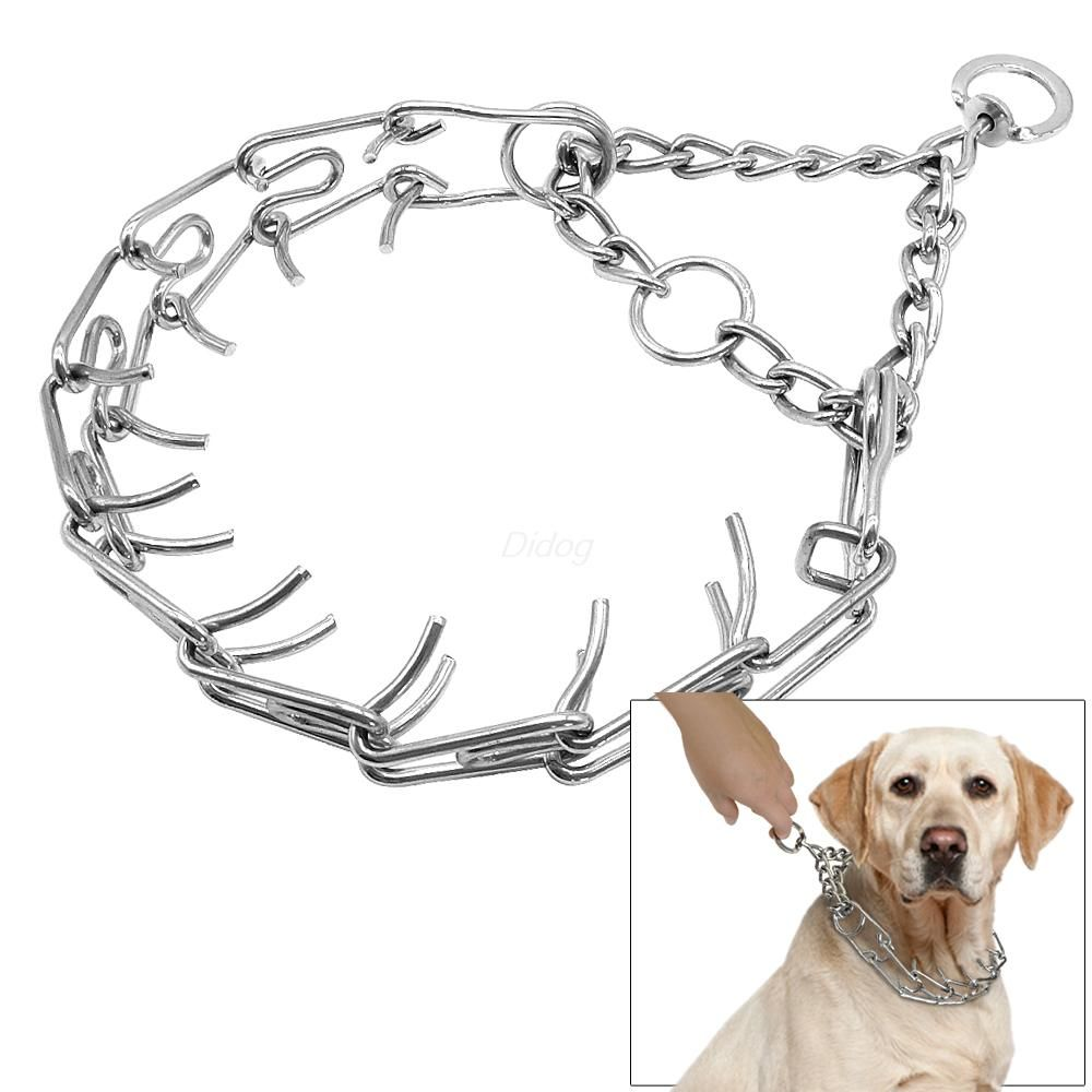 Caninis Online Marketing Hustle Free Shopping Shop At Http Www