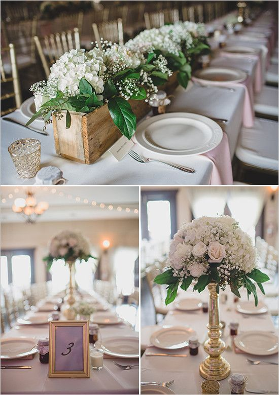 Southern Comfort At The Zoo Wedding White Hydrangea Centerpieces Zoo Wedding Wedding