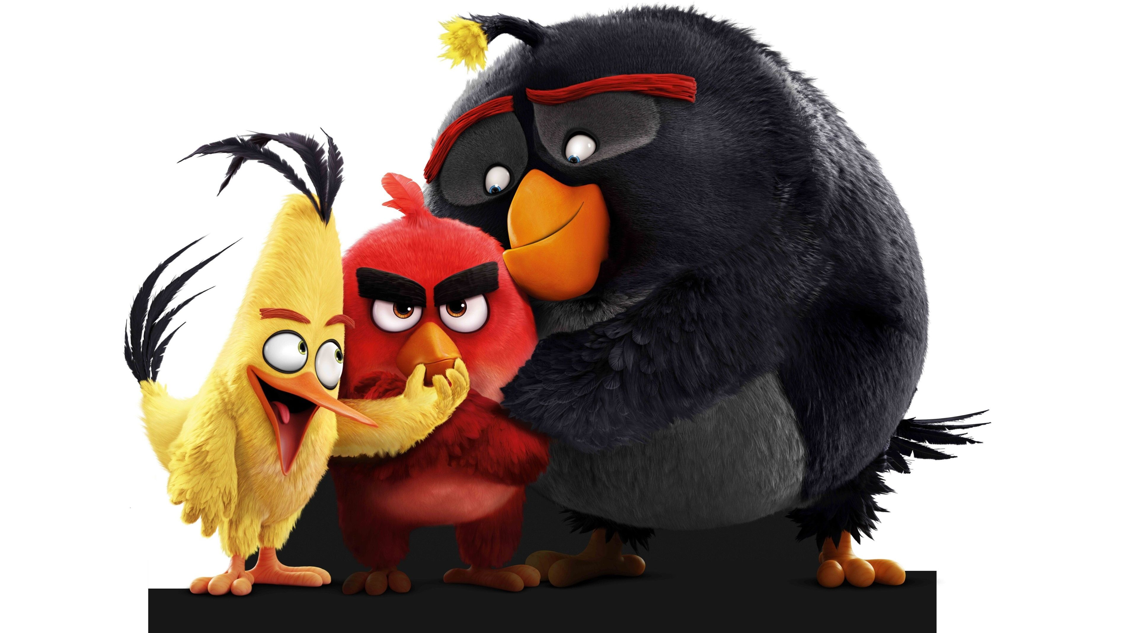 3840x2138 Angry Birds Movie 4k Best Wallpaper For Desktop Background Angry Birds Chuck Angry Birds Angry Birds Characters