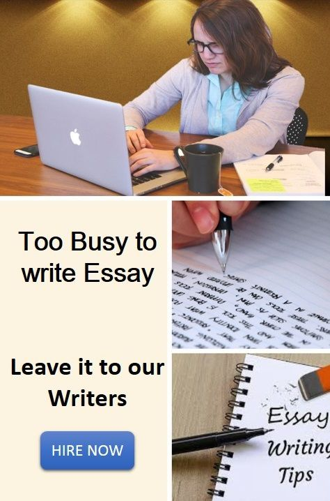 Website for essay writing in english