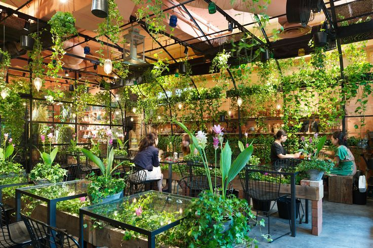Aoyama flower market tea house the name says all a cafe for Vivero cafe jardin