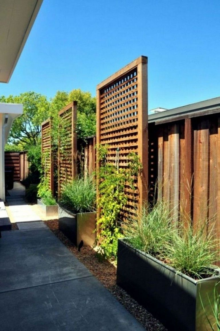 Amazing Privacy Fence Ideas For Gardens