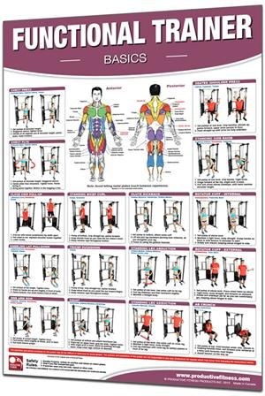 functional training chart basics  2495 this poster