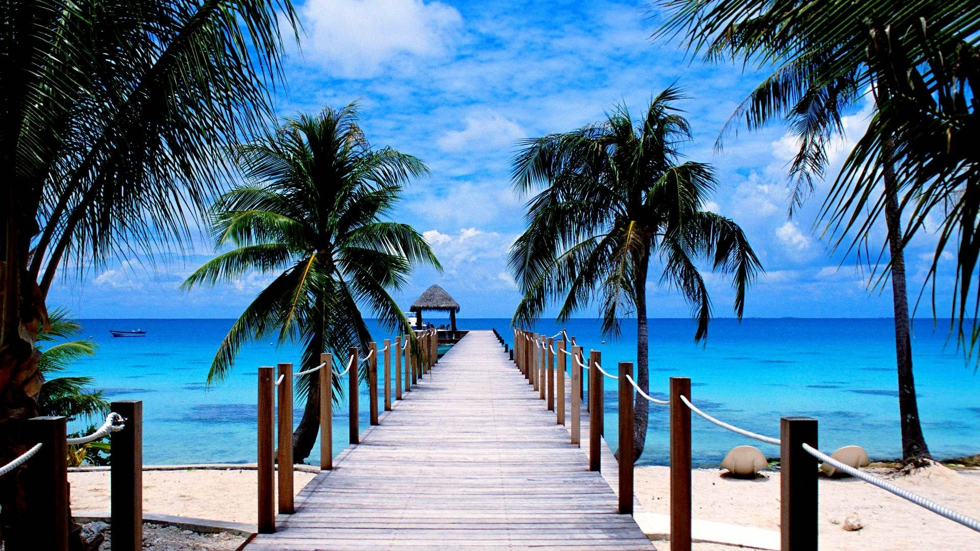 Image For Tropical Beach Paradise Wallpaper High Quality