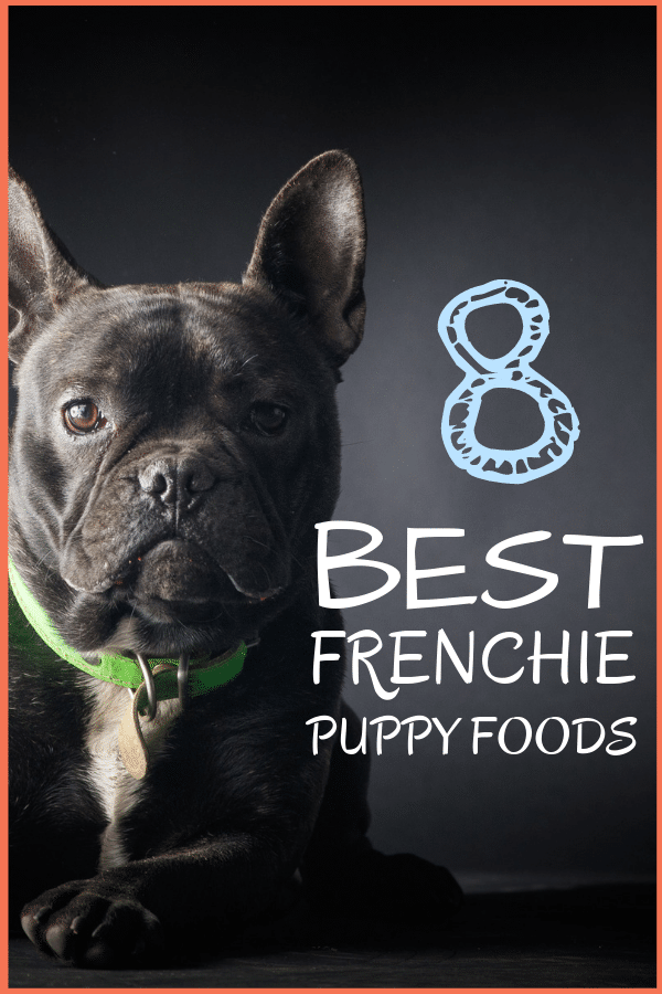 8 Best Foods For A French Bulldog Puppy With Our Most Affordable Pick Funnybulldog 8 Best Foods For A French Bull Bulldog Puppies Bulldog French Bulldog Puppy