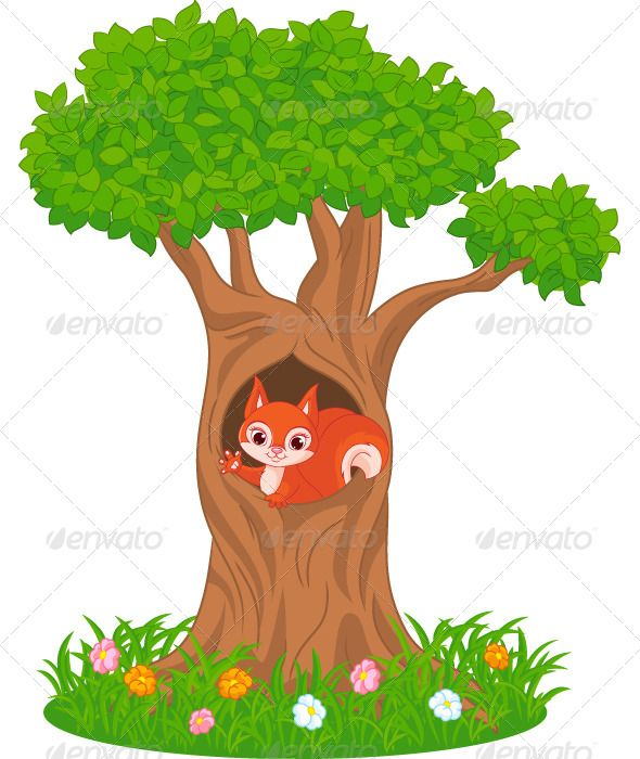 Vectors Squirrel Graphicriver Cartoon Art Styles Animal Art Projects Vector Graphics Design