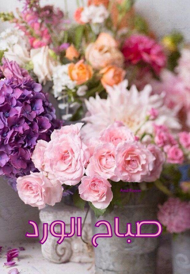 صباح الورد   صباح الخير good morning   Pinterest   Islamic quotes ...