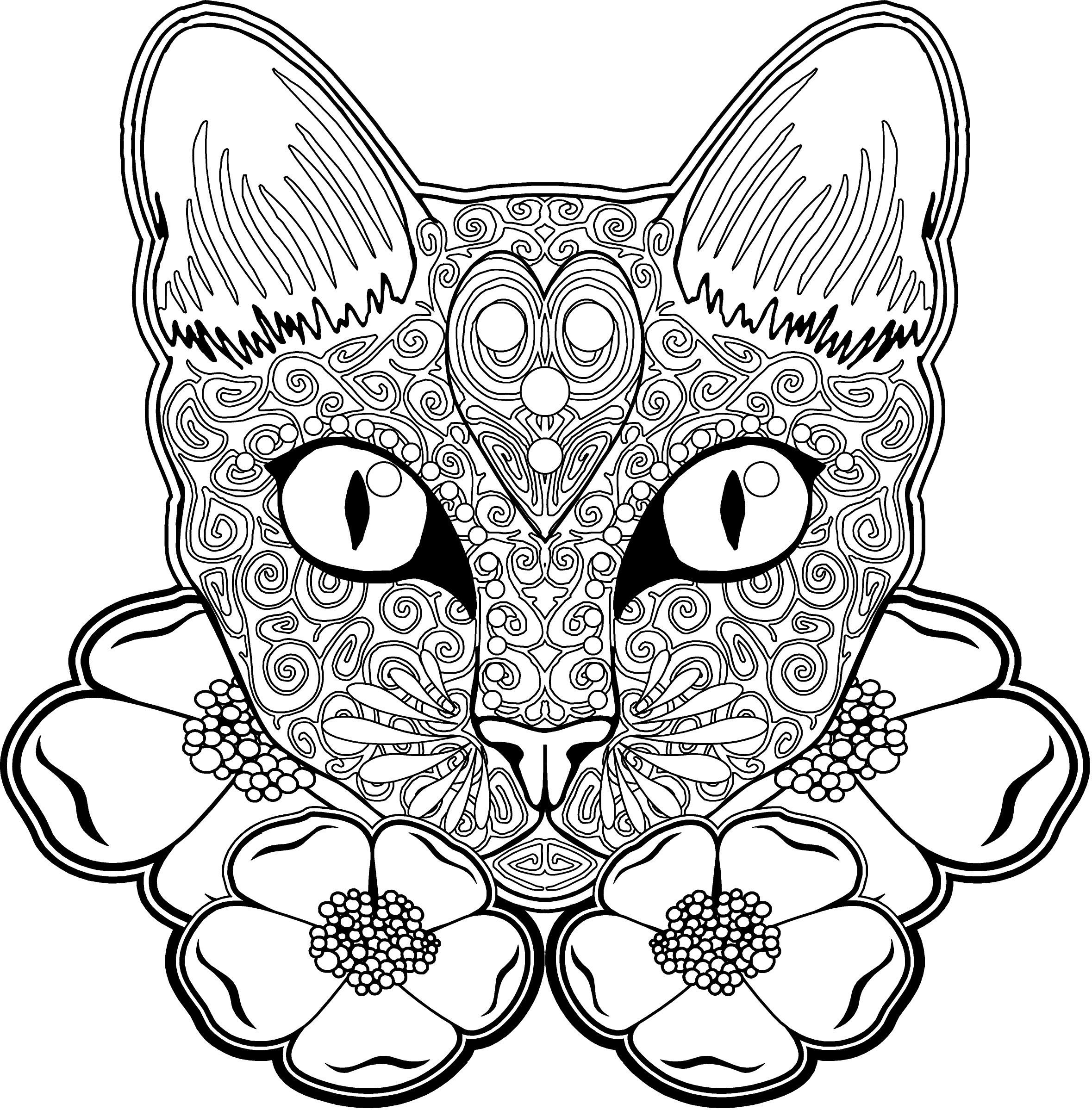 Pin by Life On A Budget 4U on coloring pages Cat