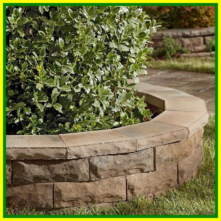 36 Reference Of Raised Paver Patio Retaining Wall In 2020 Backyard Grass Landscaping Raised Garden Landscaping Around Trees