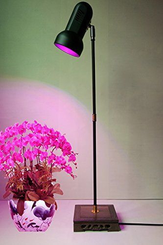 Full Spectrum Desk Lamp Reviews Grow Lights For Plants 640 x 480