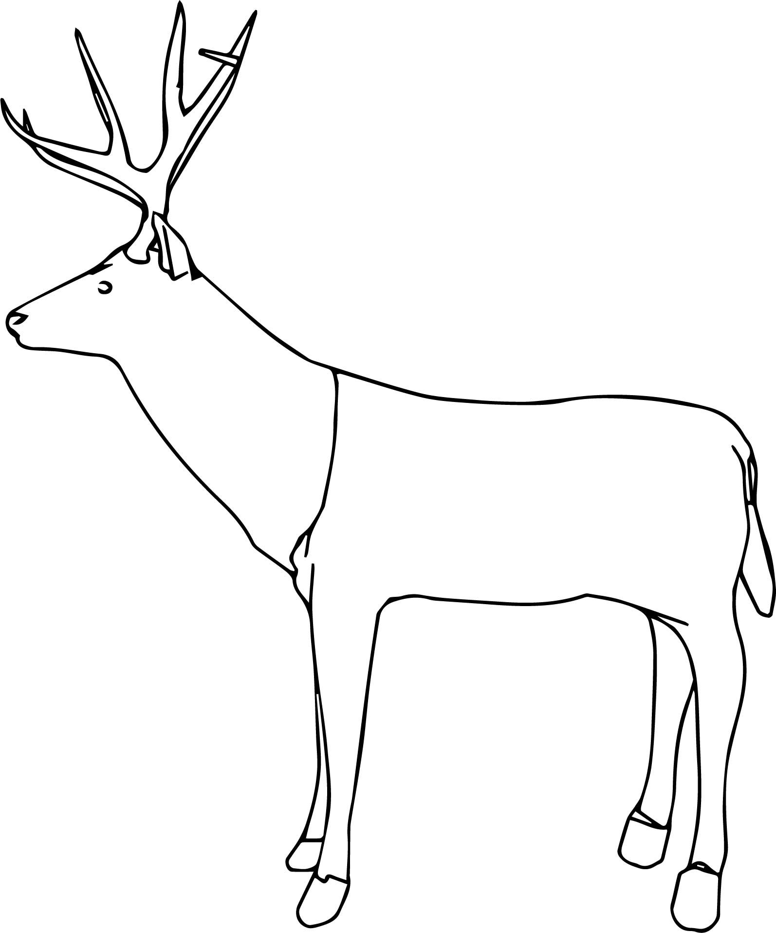 Nice Deer Side Coloring Pages