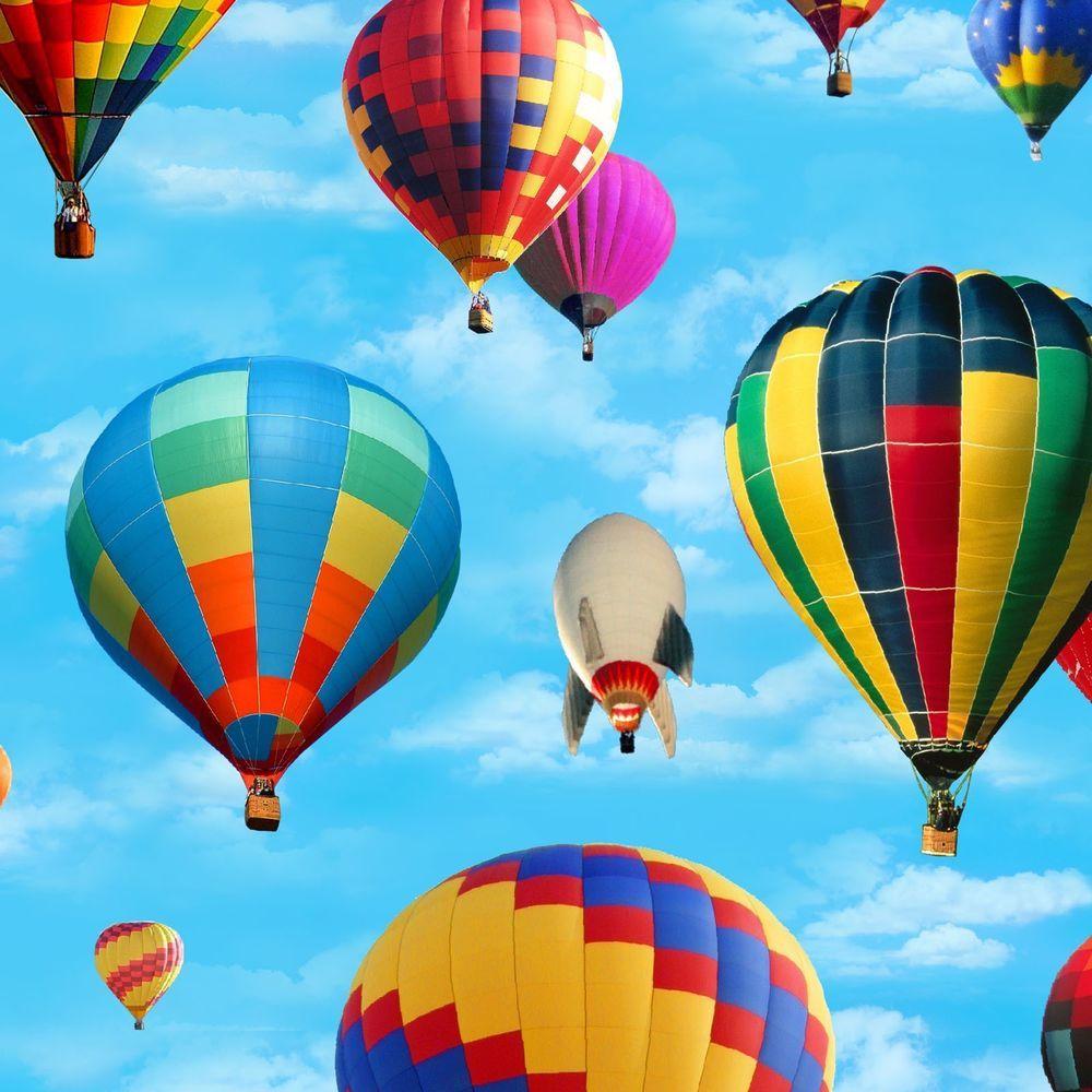 Hot Air Balloons Fabric, 100 QSQ Cotton, Elizabeth