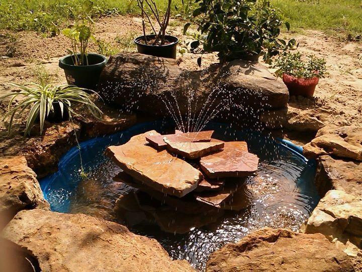 Diy Fish Pond Kiddie Pool