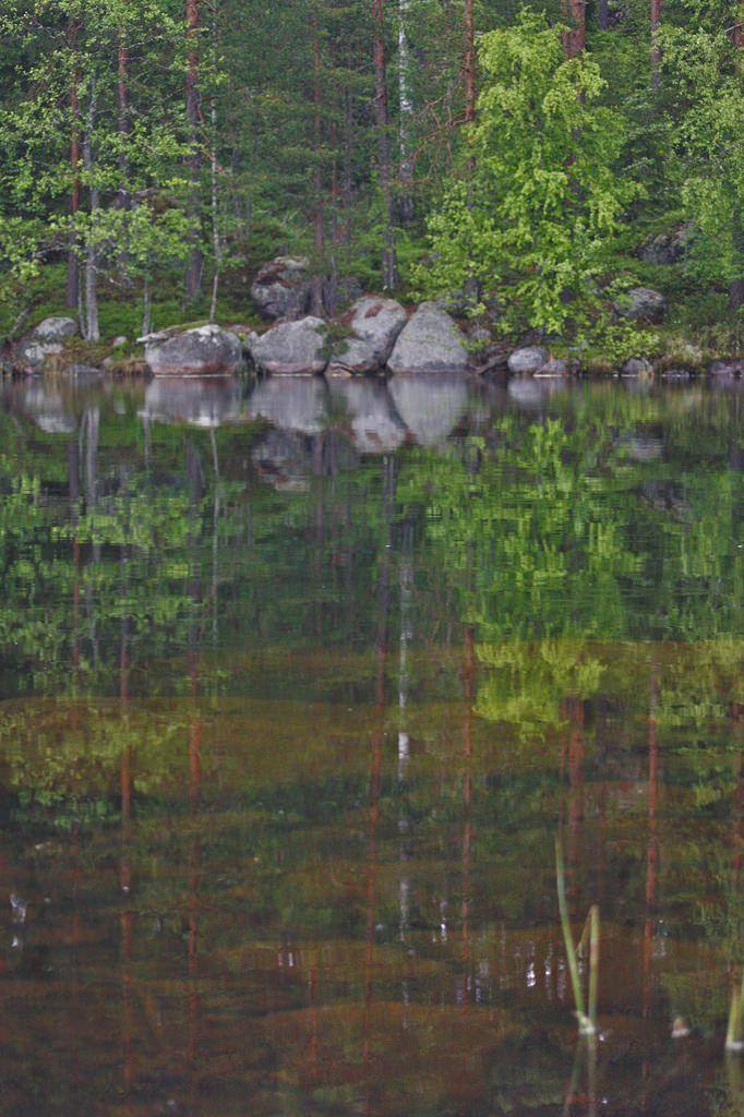 Yksi kesä, neljä kansallispuistoa #Suomiretki  http://bit.ly/1gFMWMk?utm_content=buffer6b5f5&utm_medium=social&utm_source=pinterest.com&utm_campaign=buffer