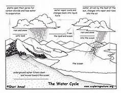 Water Cycle Fill In The Blank Quiz Exploring Nature Educational Water Cycle Worksheet Water Cycle Activities Water Cycle Diagram