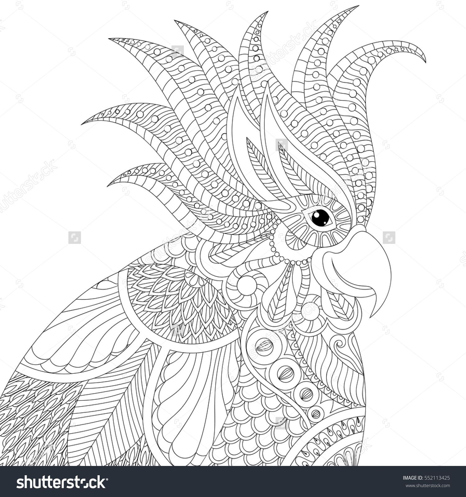 exotic tropical zentangle cockatoo parrot for adult anti stress coloring pages book bird head