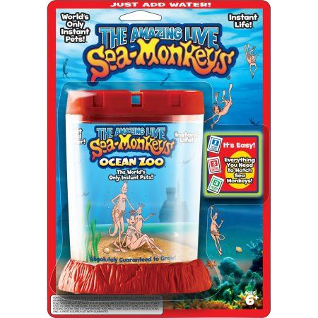 Big Time Toys The Amazing Live Sea Monkeys Kit Ocean Zoo Walmart Com Sea Monkeys Bad Gifts Best Educational Toys