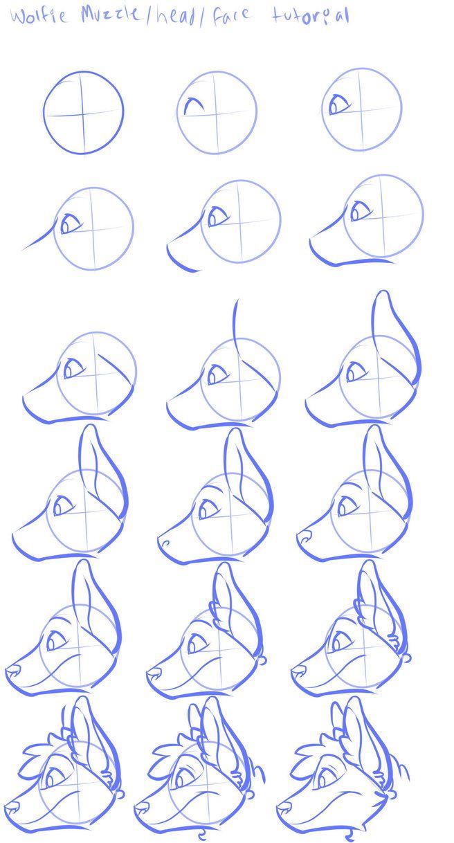 Photo of Wolfie head tutorial profile view by BadmashBlitz on DeviantArt
