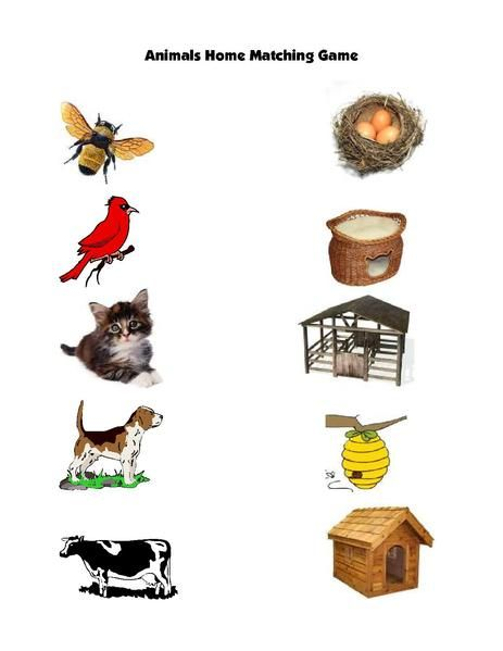 Animal Homes Matching Game Animals, Learning english for