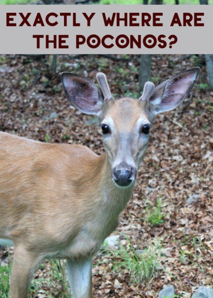 Exactly Where Are The Poconos?