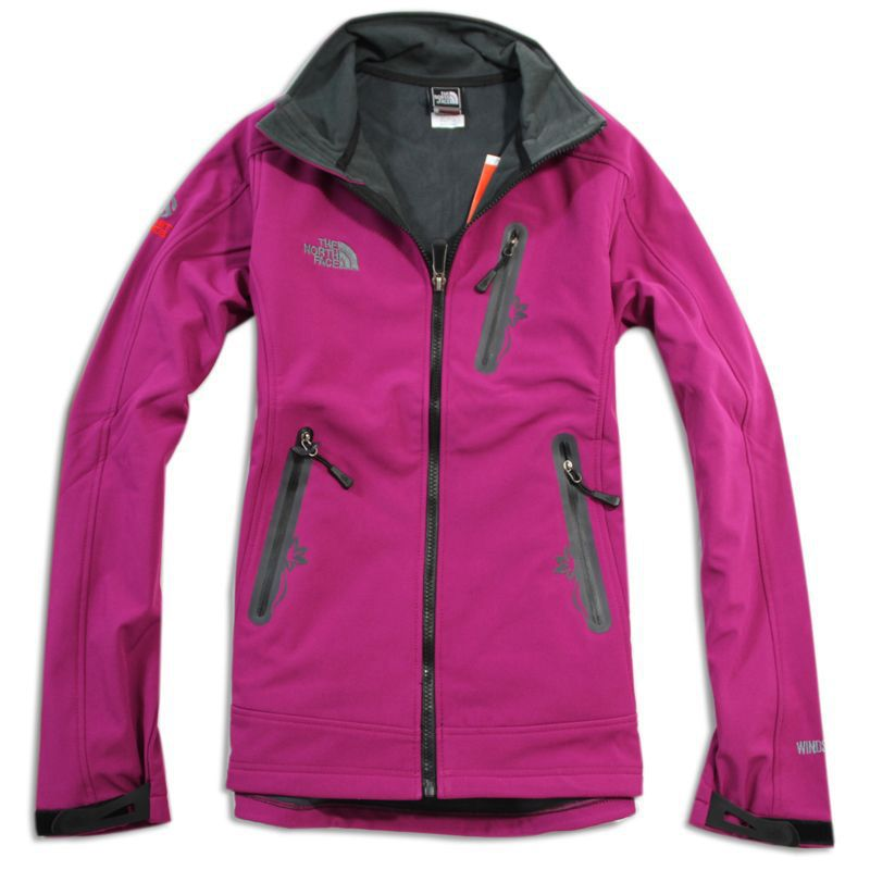 251d0031a france north face pamir windstopper fleece jacket 8f06a d281f