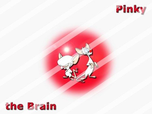 Pinky and the Brain Edible Cake Topper Frosting 1/4 Sheet Image #24