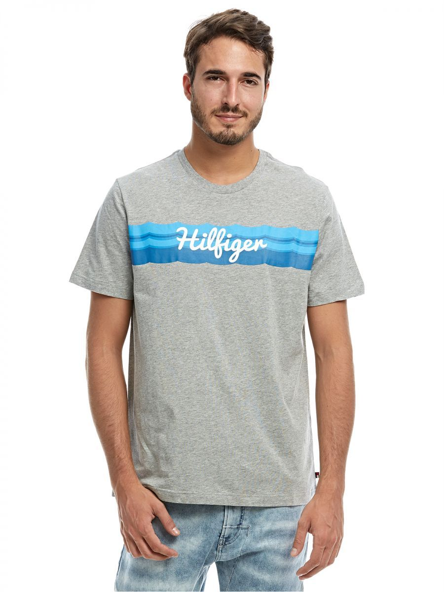 229cdbc5 Tommy Hilfiger T-shirt for Men - Grey, price, review and buy in Dubai, Abu  Dhabi and rest of United Arab Emirates | Souq.com