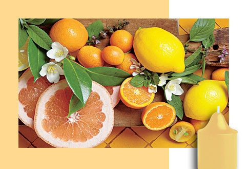 Sitruskuori & salvia Hedelmiä & sitrusta Kirkas auringonpaiste huuhtoo ylitsesi. Tuoksussa yhdistyvät mehukkaat appelsiinit, sitruunat ja greippi, mukana lämmin ripaus salviaa ja seetripuuta.