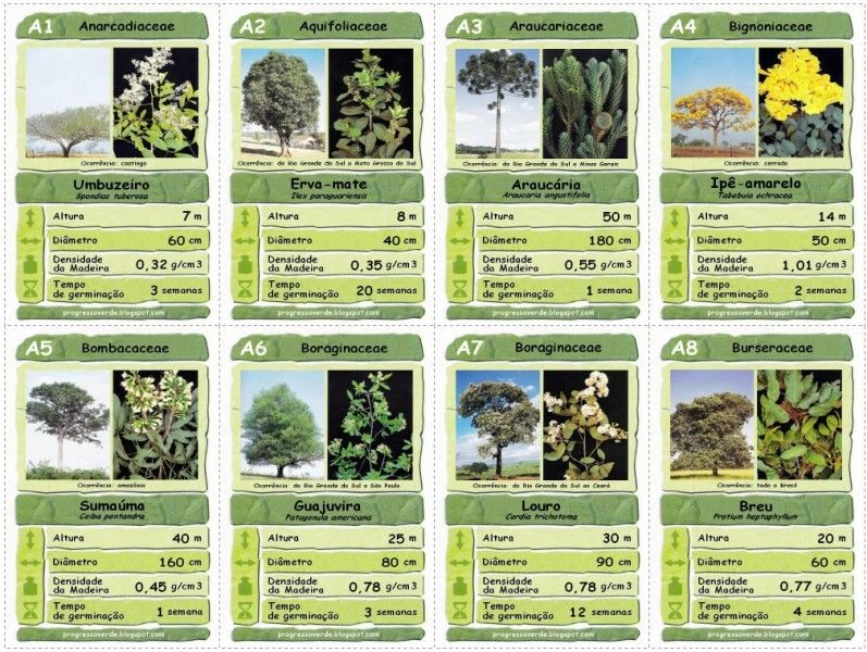 Super trunfo de árvores brasileiras