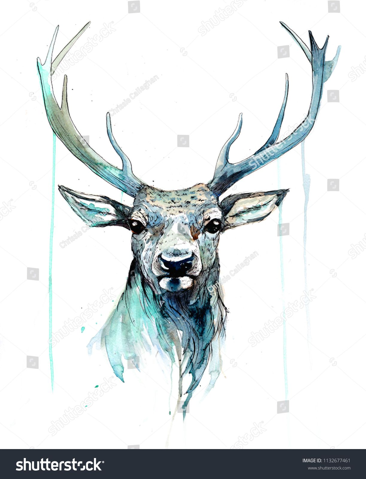 Stag Portrait Watercolour Style Canvas Print Framed Wall Art Picture
