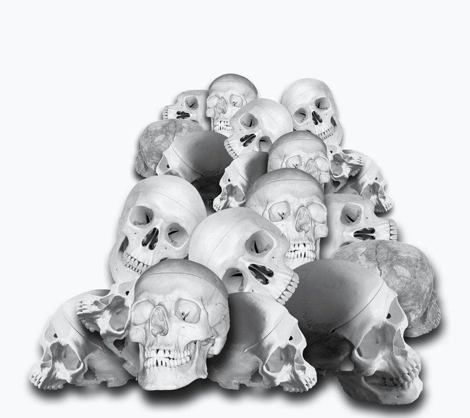 Pin On Skull 2