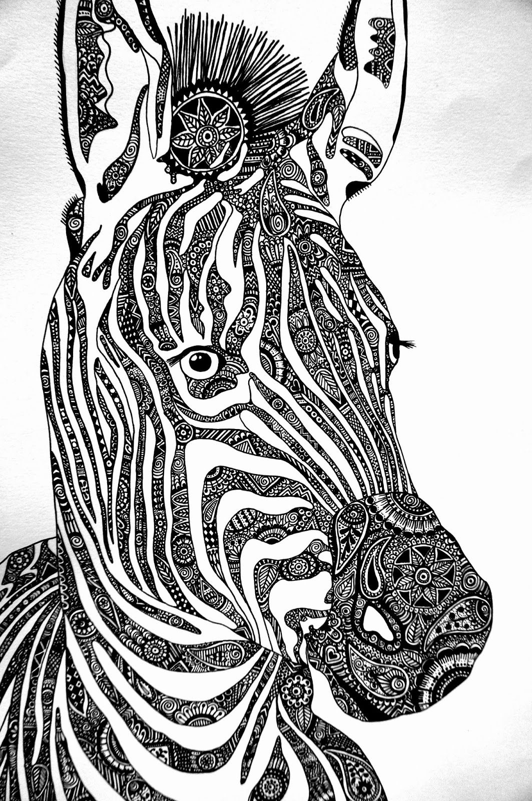 Pin By Robochase6000 On Random Zebra Art Zebra Drawing