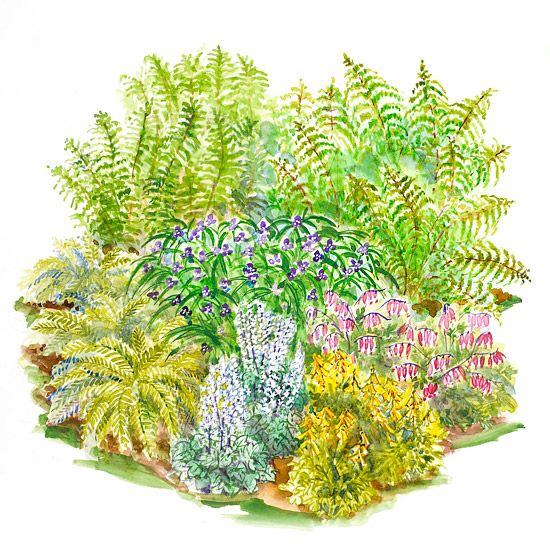 This garden plan combines easy adaptable plants to add color to – Small Garden Planning