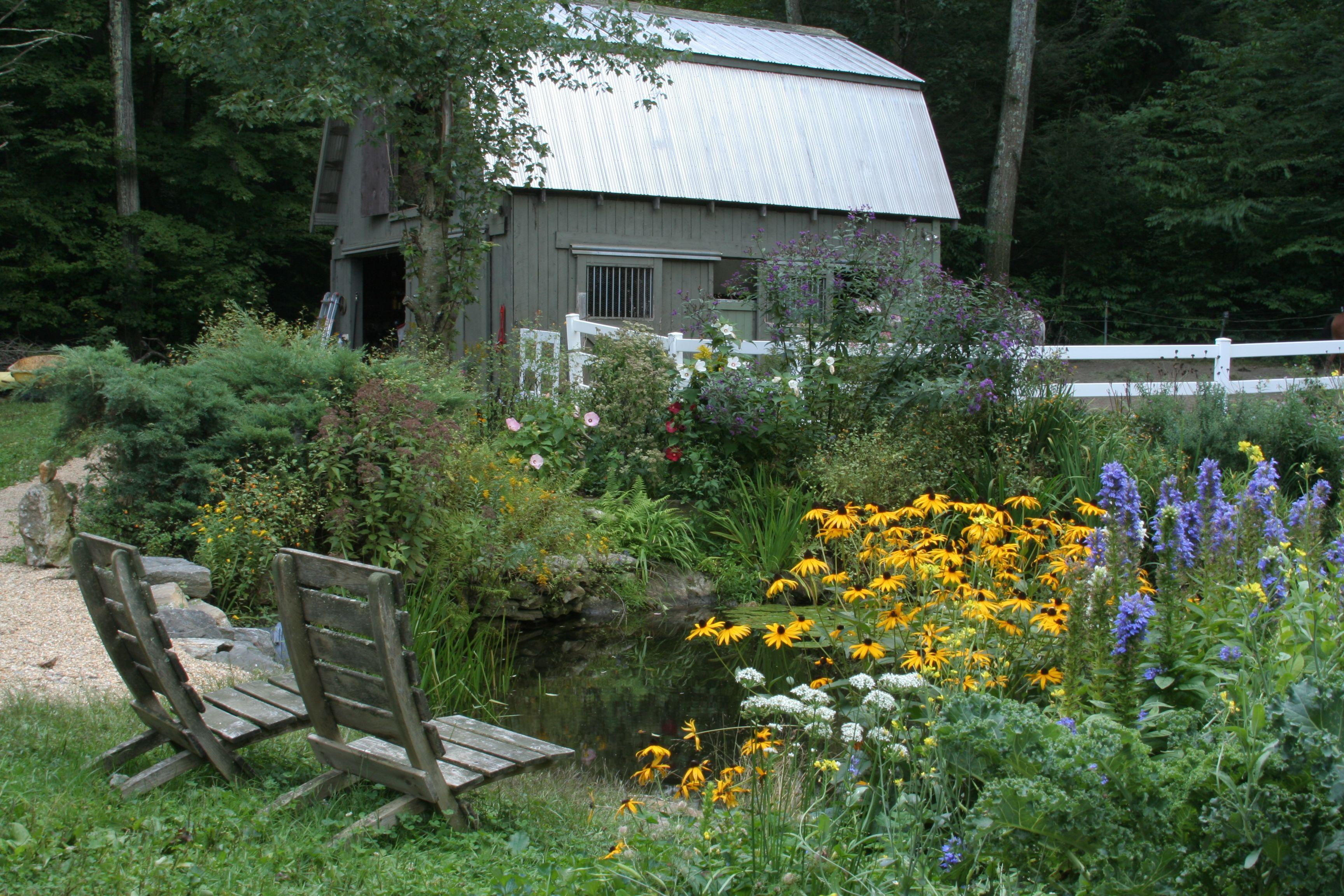farm pond landscaping ideas google search farm pond