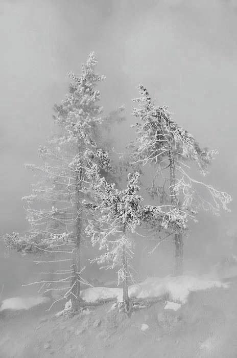 Tormenta de nieve