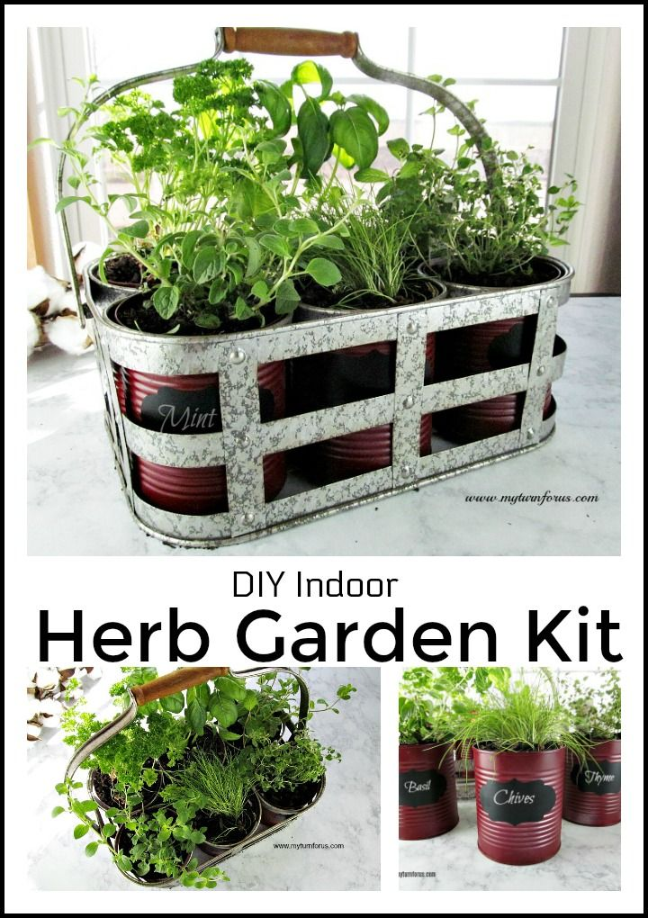 Make This Easy And Inexpensive Diy Indoor Herb Garden Kit From Recycled Cans Gardening