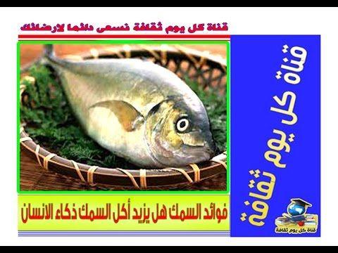 سمك فوائد السمك هل فعلا يزيد أكل الاسماك ذكاء الانسان نصائح صحية Fish Meat