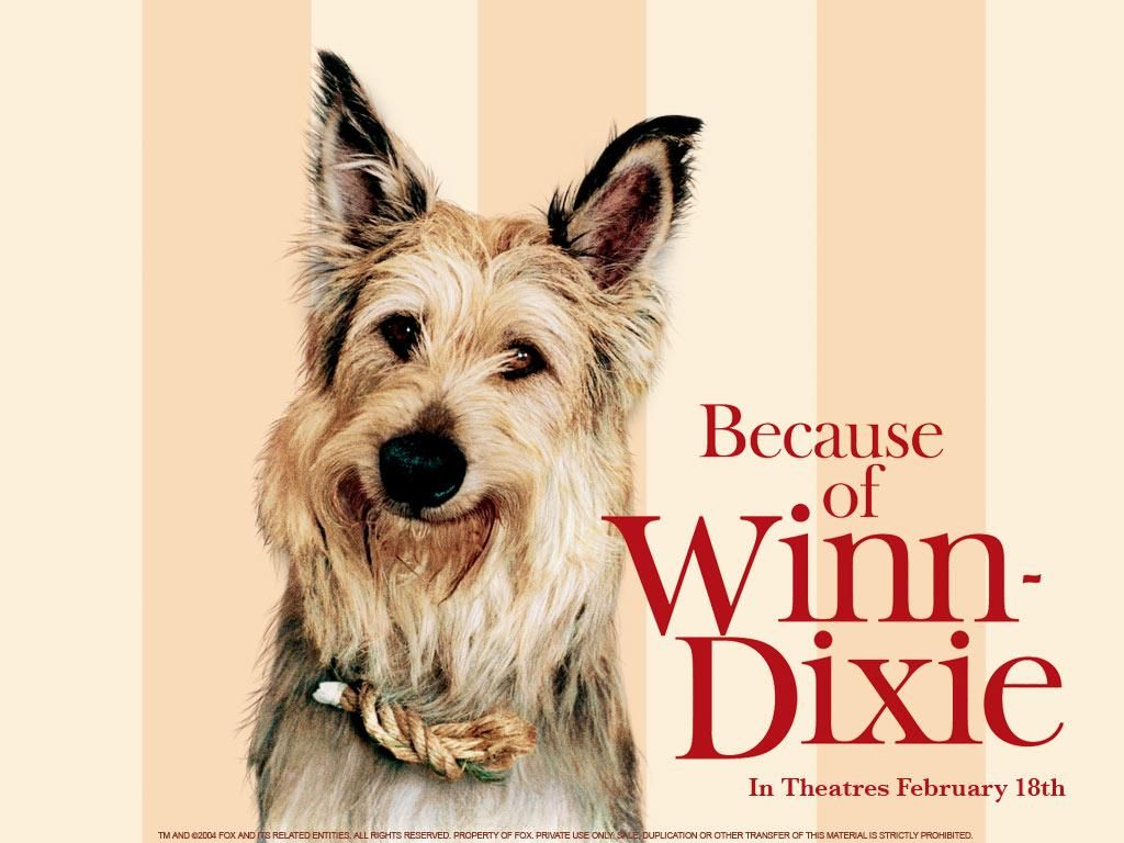 Check out this #Kahoot called 'Because of Winn-Dixie' on ...