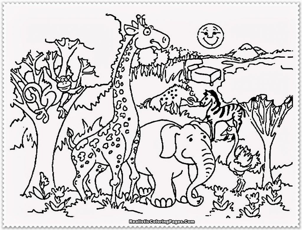 Zoo Coloring Sheet 2017 16843 Zoo Animals Coloring Pages 19 About