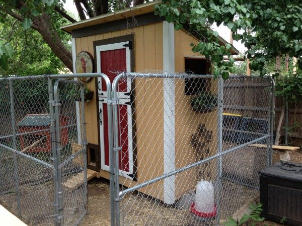 Ana white chicken coop with modifications do it yourself home ana white chicken coop with modifications do it yourself home projects from ana white my solutioingenieria Images