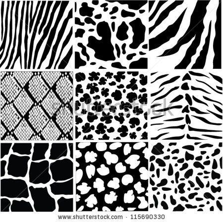 Stock Vector Vector Black And White Skin Of Different Animals