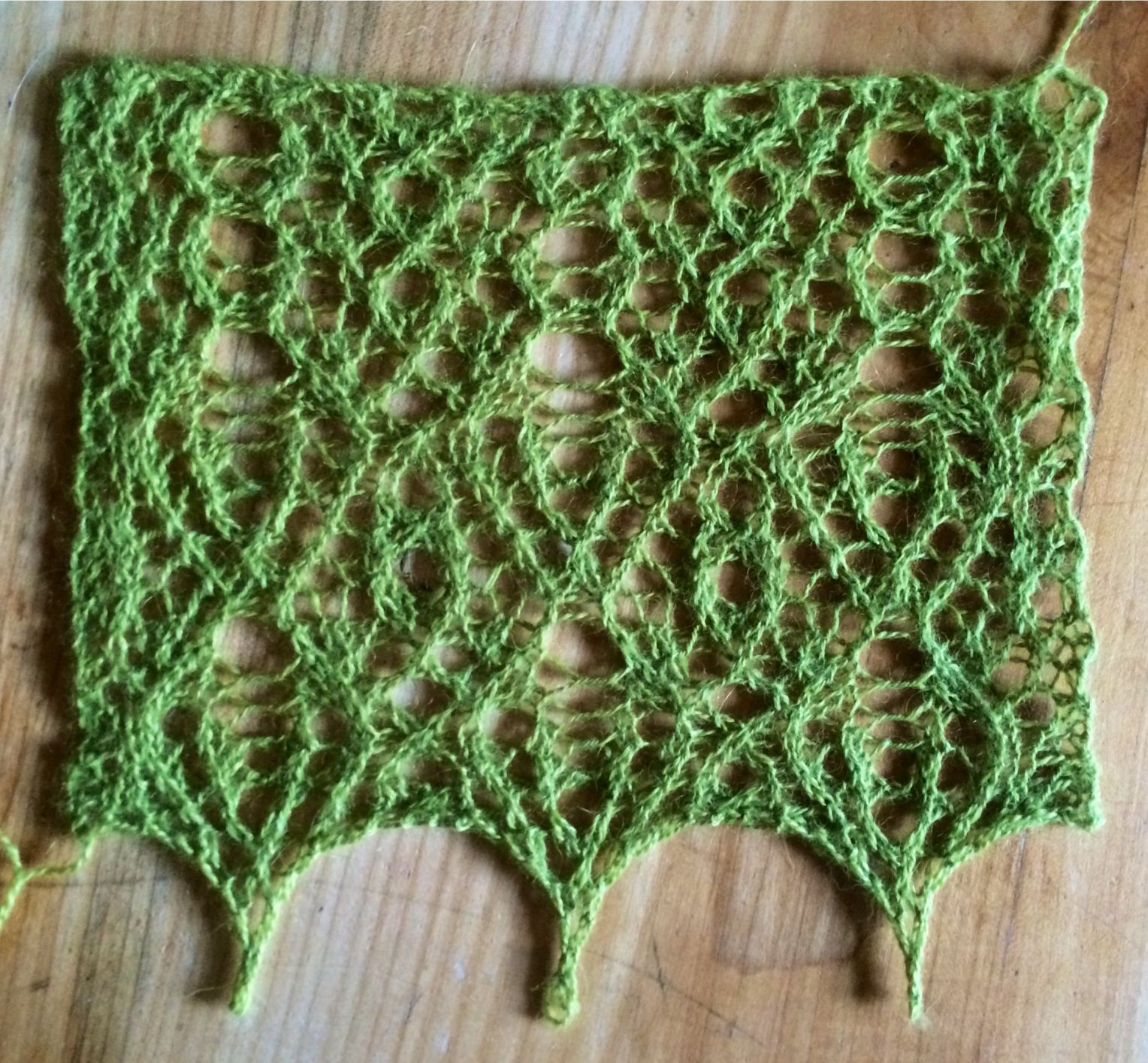 Wild/erness, a free lace knitting pattern.