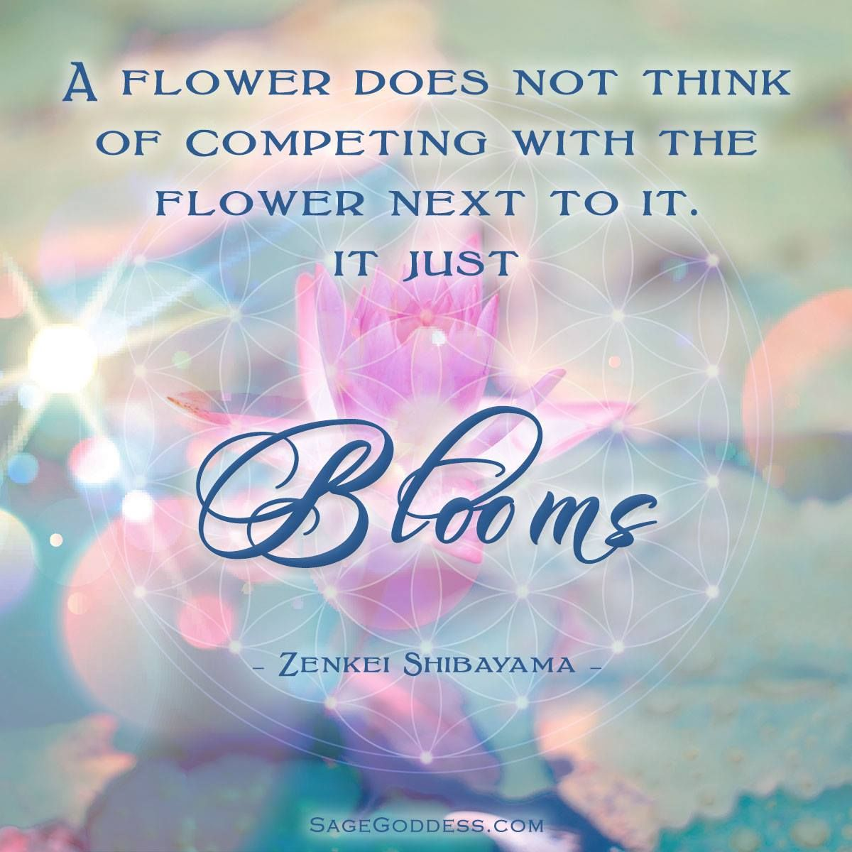 A Flower Doesnt Think Its Competing With Other Flowers Just Blooms