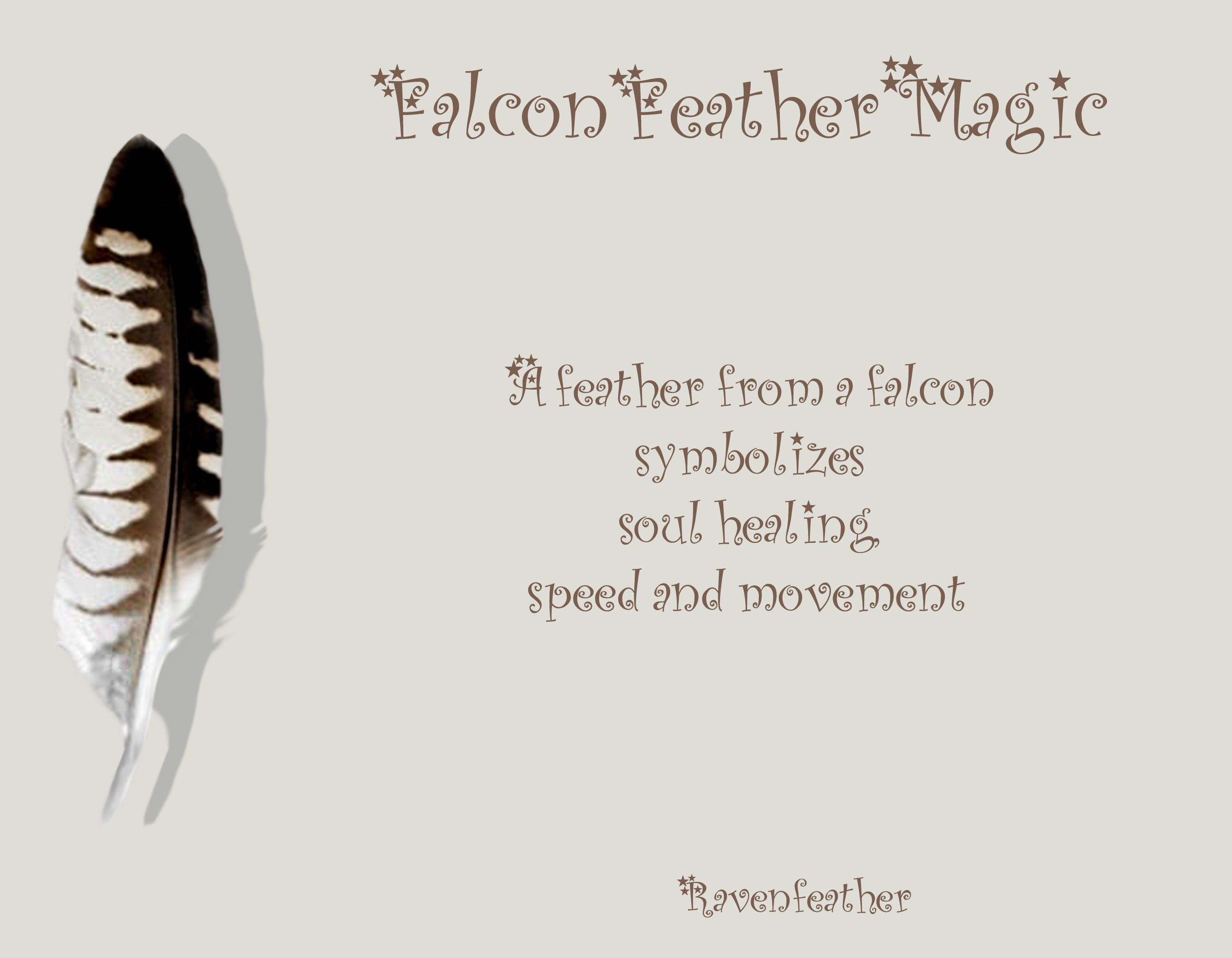 Falcon Feather Magic
