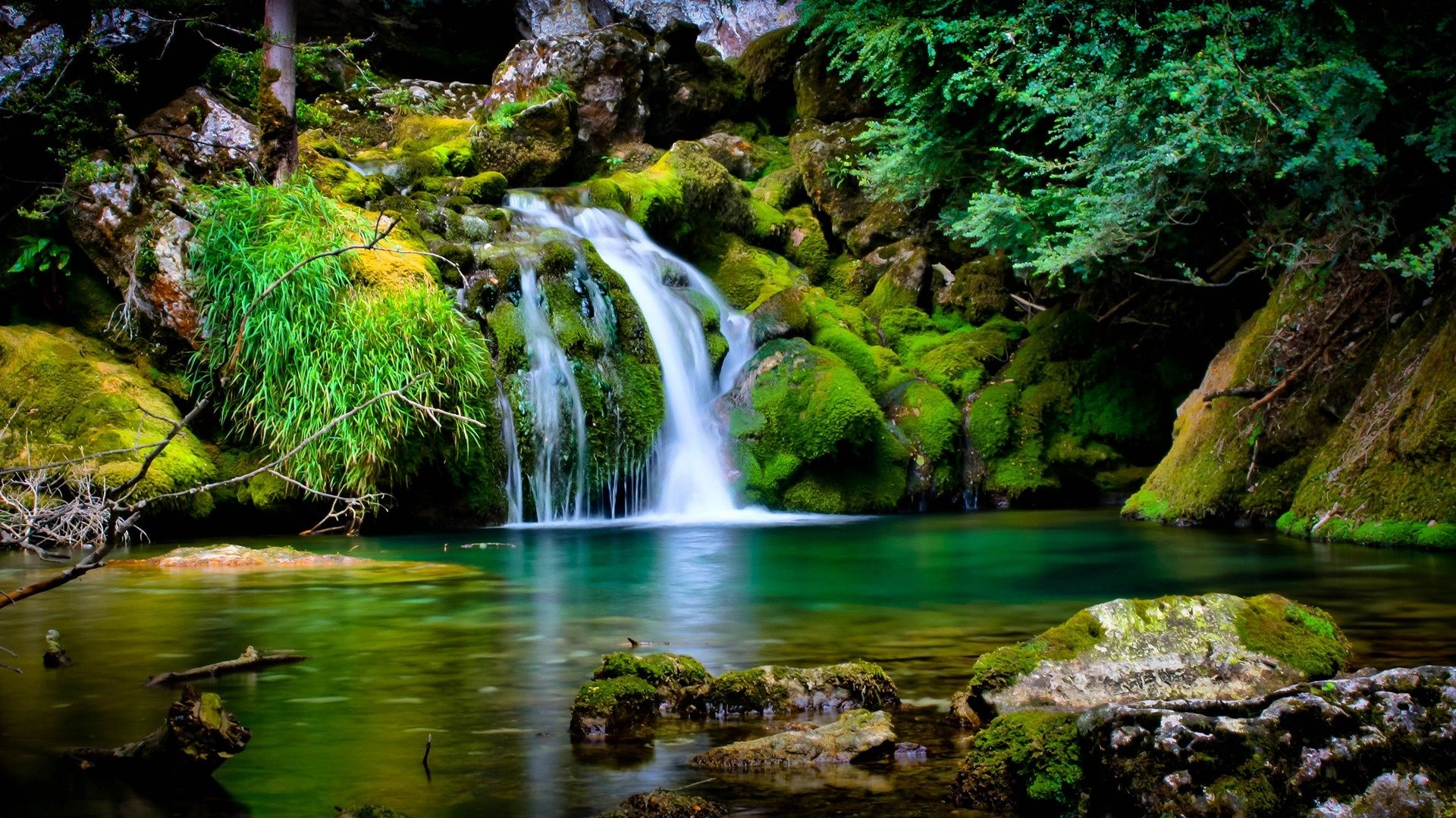 Water Download Nature Wallpaper Green Water Beauty In